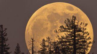 Jak ovlivní dnešní superměsíc naše chování?