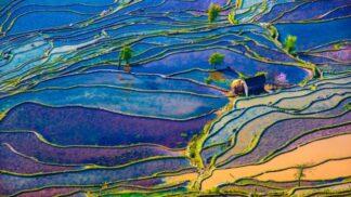 19 fotek rýžových teras, od kterých neodtrhnete oči