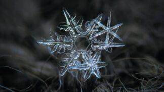 28 neuvěřitelných snímků sněhových vloček
