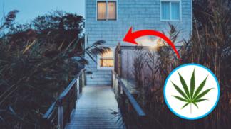 5 udržitelných materiálů, které vaši domácnost promění v přírodní ráj
