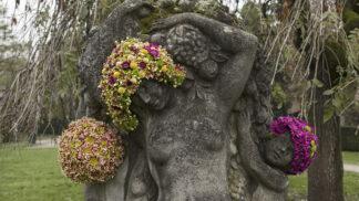 Belgický florista dělá sochám květinové vousy a vlasy