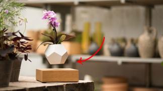 Levitující květináč popírá všechno, co jsme se kdy dozvěděli ve fyzice