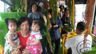 Čínský bus se proměnil v bránu do tropického pralesa. A cestující jásají!