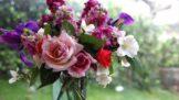 7 způsobů, jak udržet květiny dlouho čerstvé