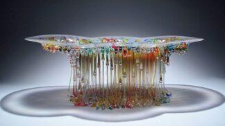GALERIE: Tyhle medúzy si s radostí pustíte k tělu. Nežahají a jsou nad všechny konferenční stolky