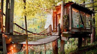 20 pohádkových stromových domků, které vám učarují víc než kdejaký pětihvězdičkový hotel