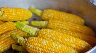 Tvrdá jako beton? Připravte kukuřici doměkka. Polijte ji majonézou, posypte sýrem a sliny se dají na útěk