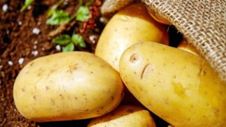 Vyhýbáte se bramborám? Neděláte dobře! Proč jsou tak prospěšné?