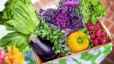 Bojovníci s rakovinou: Jaké potraviny vám udělají dobře?