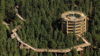 Vezměte děti na Lipno! Pohádkové Království lesa pod Stezkou korunami stromů otvírá své brány