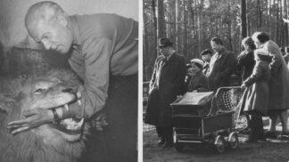 Zázračné přátelství muže a lva: Odhalte tajemství vzniku děčínské zoo před 70 lety