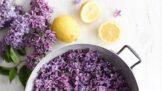 Thumbnail # Vyrobte si šeříkový sirup: Voňavou domácí limonádu pak můžete popíjet celé léto