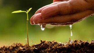 Kvalita, šetrnost k přírodě a mnoho dalšího se ukrývá pod zkratkou BIO