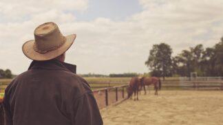 Návraty 2017 pomáhají koním i seniorům stárnout spolu: 6. projekt, který můžete podpořit