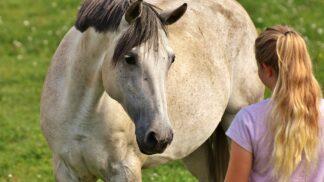 Vsedle koně – hippoterapie pro osoby smentálním nebo kombinovaným postižením: 15. projekt, který můžete podpořit