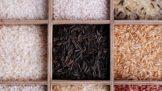 Thumbnail # Tajemství rýže: Jaký druh používat na rizoto a jak tu klasickou nikdy nerozvařit?