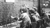 137 let od otevření první telefonní ústředny: Jak probíhal první den jejího provozu?