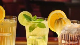 Obliba domácích ledových čajů roste: Recept bez cukru a zbytečných aromat # Thumbnail