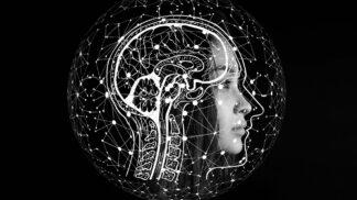 Vědci zjistili, co se s naším mozkem děje po smrti: Stále ještě vnímá