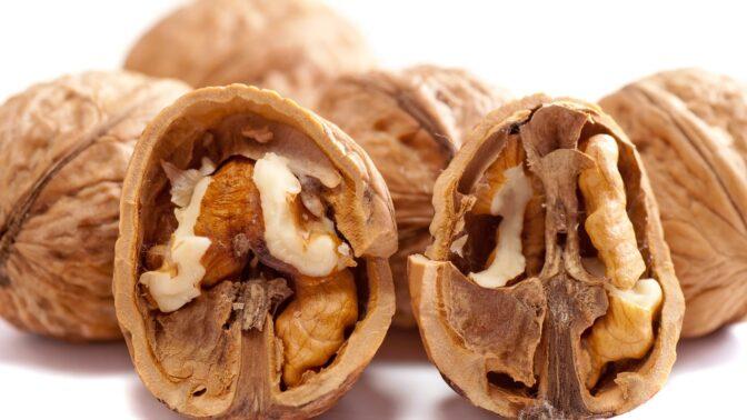 Vlašské ořechy: Jak je správně sušit a skladovat, abyste z nich měli to nejlepší cukroví