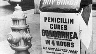 Z historie penicilinu: Alexander Fleming si náhodou všiml plísně v misce s bakteriemi