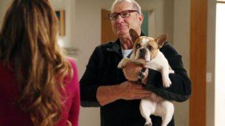 Fenka Stella ze seriálu Taková moderní rodinka odešla do zvířecího nebe. Herec Ed O´Neill ji miloval # Thumbnail