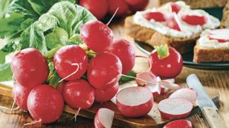 Ředkvičky: Červené královny jarní kuchyně. Jak s nimi pracovat a kde koupit ty nejlepší? # Thumbnail