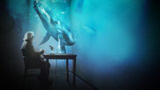 Dokumenty na Discovery odkazují na blížící se Světový den oceánů