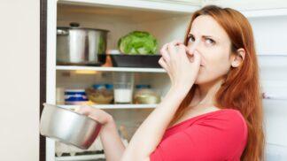 Odhalte skryté nepřátele zdraví: V kuchyni číhají ve dřezu i v chladničce