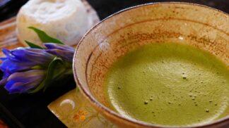 Čaj, který můžete pít místo kávy: S matchou zhubnete a jen tak nezestárnete