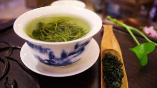 Zdraví a vitalita z čajovníku: Ten zelený prý vyléčí 21 chorob, tvrdí Japonci