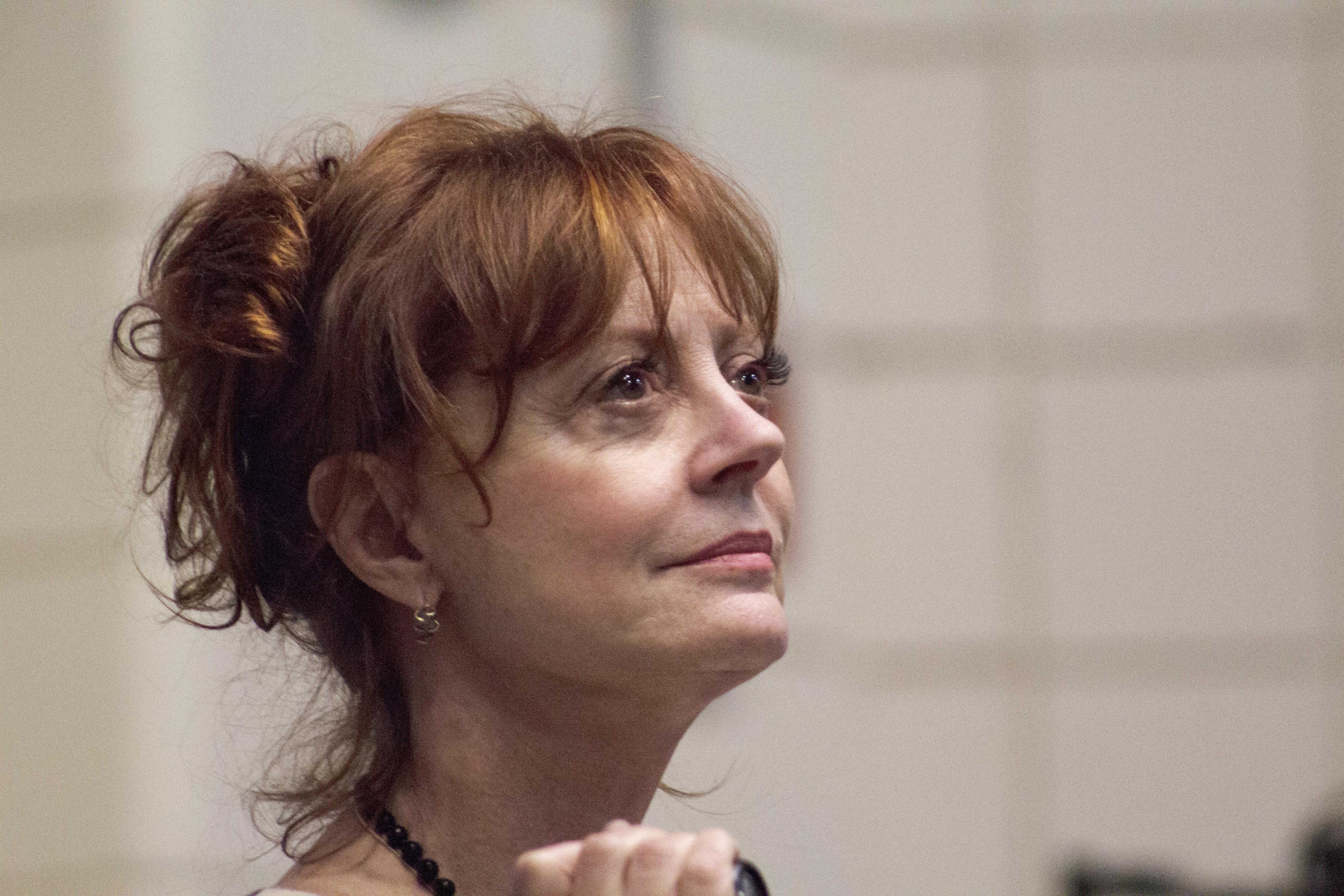 Thumbnail # Susan Sarandon: To NEJ o světoznámé herečce…