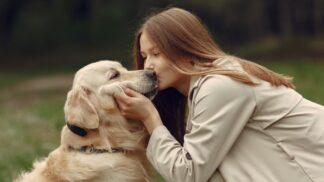Hana (31): Pes zachránil život našemu nenarozenému dítěti. Nedám na něj dopustit