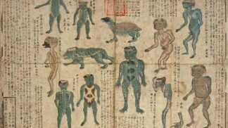 Mýtický japonský vodník Kappa: Kříženec opice a želvy požírá lidi i dobytek
