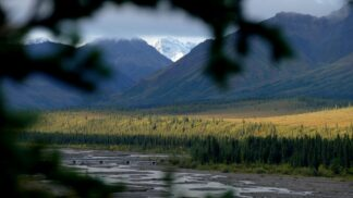 Bezcitný lovec žen z Aljašky: Robert Hansen své oběti svlékl a pak je pronásledoval v divočině