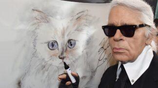 Dva roky od smrti návrháře Karla Lagerfelda: Miliardy po něm zdědila jeho kočka