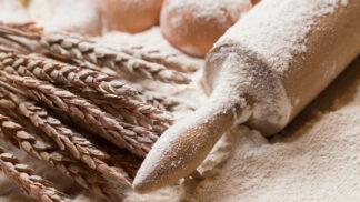 Pšeničná mouka: Jak se liší jednotlivé druhy a kdy kterou použít