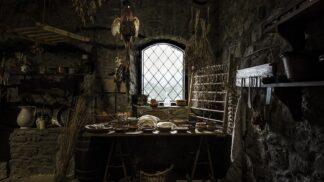 Nejšílenější jídla středověku: Nadívaného ježka zapíjeli pivem z kohouta