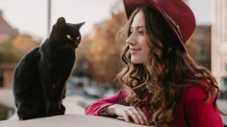 3 znamení zvěrokruhu, pro která je kočka vhodnější domácí mazlíček než pes