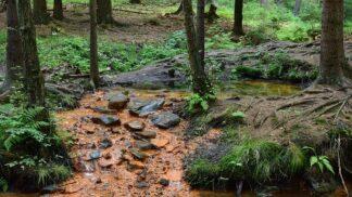 Krvavé rituály i nelidské popravy: Lužické hory ukrývají jedno z nejnegativnějších míst v Česku