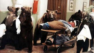 Šest medvědů s Cibulkou: Zuřivá zvířata připravila štábu perné chvíle