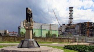 Příroda v Černobylu: Žížaly se po výbuchu zavrtaly metr pod zem, včely zůstaly raději v úlu