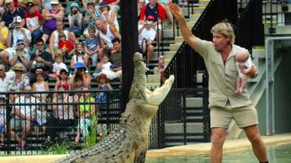 Tragická smrt lovce krokodýlů Steva Irwina: Do srdce jej bodl rejnok
