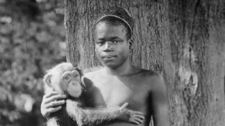 Smutný osud malého Pygmeje: Otu Bengu vystavovali v zoo, raději si vzal život
