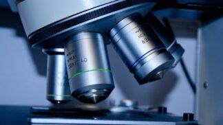 Báječný svět mikroskopů: Nejlevnější stojí 10 korun, největší připomíná obchodní dům