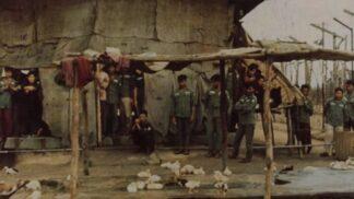 Kokosová věznice, nechvalně proslulé peklo ve Vietnamu: Zemřít jste mohli až na sto způsobů