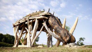 Praha má nově největší skulpturu nosorožce na světě. Najdete ji, a s ní i kus doby ledové, v pražských Lysolajích