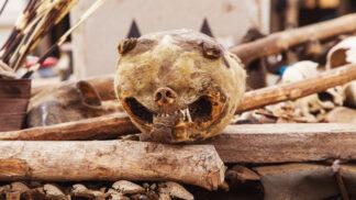 Bizarní tržiště Akodessawa: Ráj vyznavačů voodoo a lidí, kterým neumí pomoct lékaři