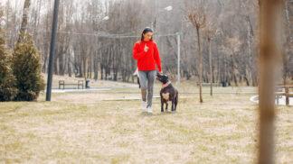 Sára (27): Svěřila jsem matce na čtrnáct dní svého psa. Po návratu jsem se nestačila divit, co z něj udělala