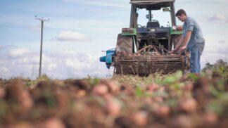 Také dodavatelé pomáhají Tescu měnit nepříznivý trend: téměř 10 % celosvětových emisí skleníkových plynů pochází z plýtvání potravinami